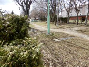南樹町公園